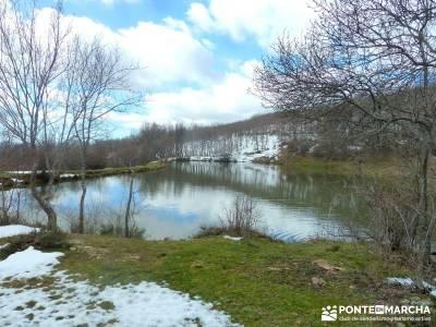 Hayedo Montejo; Reserva Biosfera Sierra Rincón; fin de semana senderismo; viajes senderismo